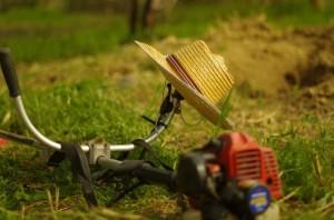 Lucrari de primavara in gradina | Blog @ Salviabox.ro